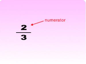 Numerator1