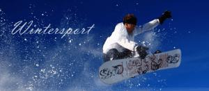 Wintersort2
