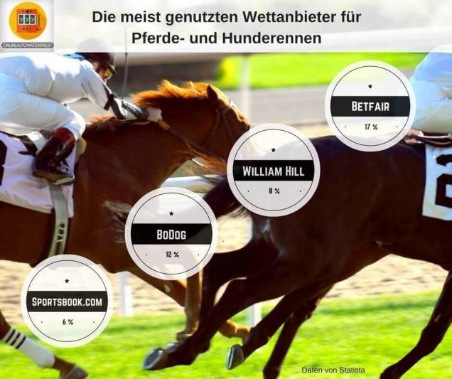 die-meist-genutzten-wettanbieter-fu%cc%88r-pferde-und-hunderennen-2