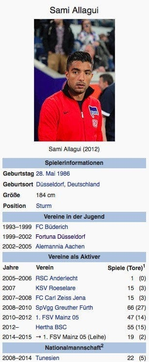 Sami Allagui / Screenshot Wikipedia