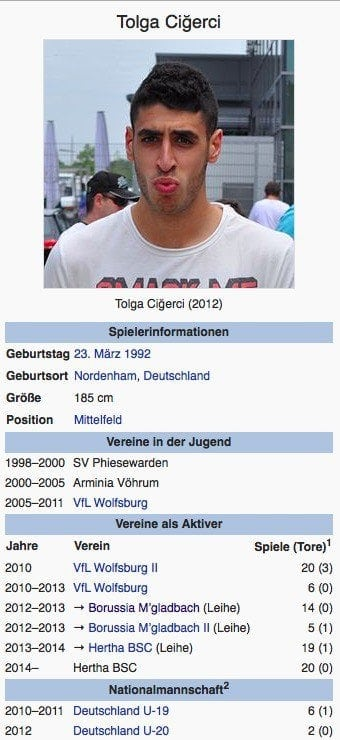 Tolga Cigerci / Screenshot Wikipedia