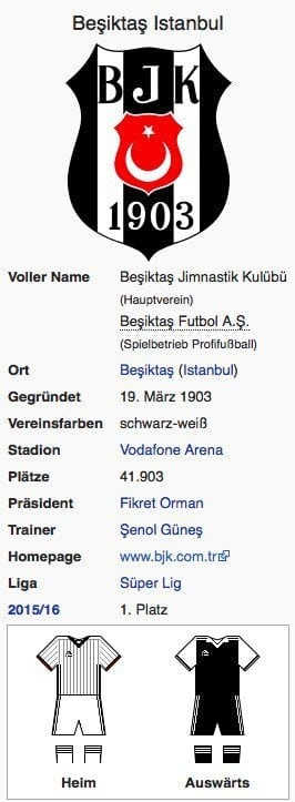 Besiktas Istanbul / Screenshot Wikipedia