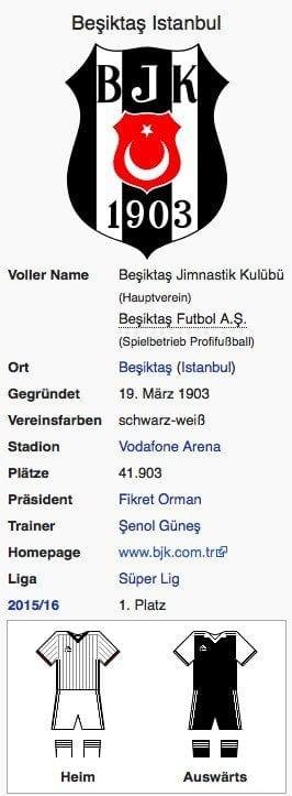 Besiktas Istanbul / Screenshot Wikipedia
