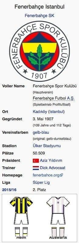 Fenerbahce Istanbul / Screenshot Wikipedia